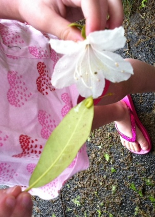 My daughter tries to tickle the caterpillar on its leafy perch with a white flower.