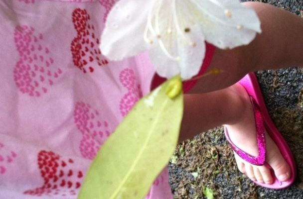 A five-year-old girl tickles a caterpillar with a flower.