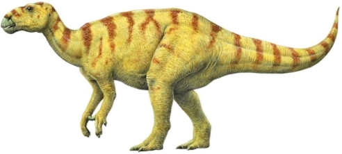 Iguanodon. Note that the dinosaur stands above the ground, not low to it. Also the horn is now thought to be a thumb spike. (Image source: Q-files Encyclopedia.)