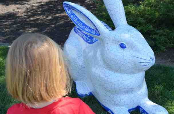 A five year old looks at a mostly white bunny, with blue ringed ears and feet.