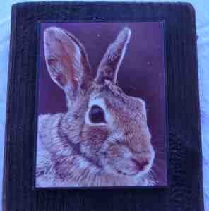 The painting shows a brown rabbit with a friendly face.