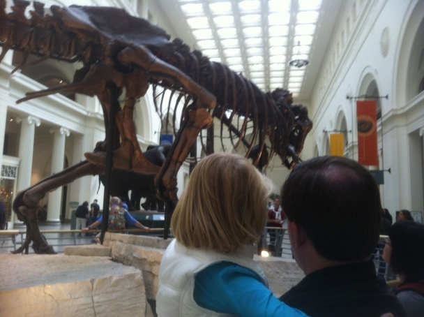 A father holds his daughter as they look at the T. Rex skeleton in the Field Museum.