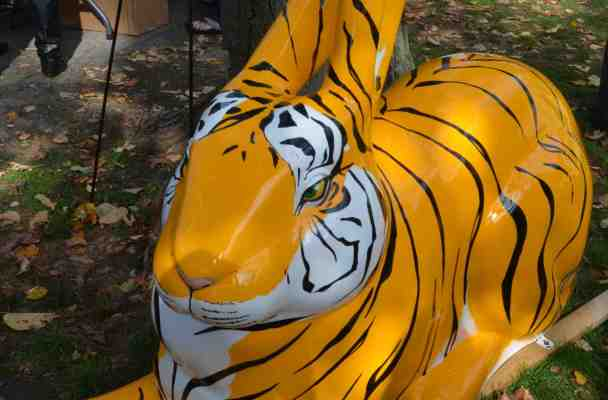The Bengal Bunny is a giant fiberglass bunny painted to look like a Bengal tiger.