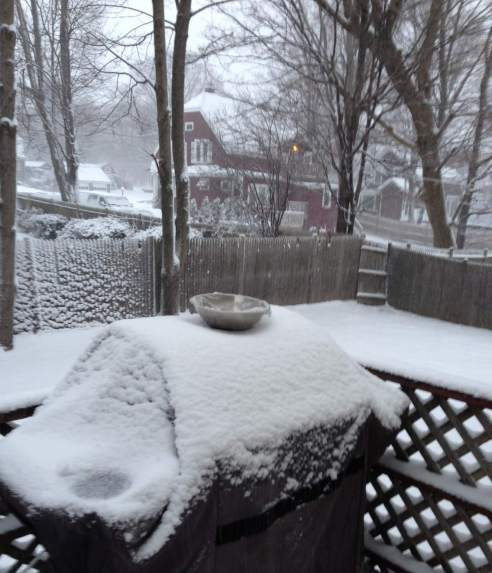 A silver bowl rests on a snow covered grill. There is lots of snow on the ground and a greyish cast to the air that implies more falling.