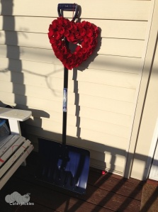 In other news, look what I found on my porch on Monday. Most romantic gift ever? (Photo: Shala Howell)