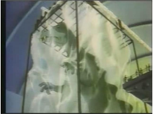 Frozen T. Rex on exhibit. (Public Domain)
