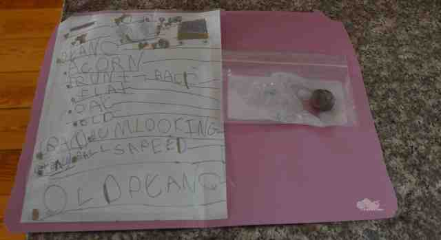 The Six-Year-Old's file on the Case of the Bizarrely Large Acorn. (Photo: Shala Howell)