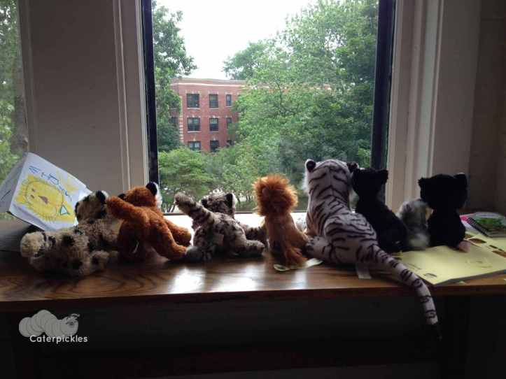 The Six-Year-Old's cubs take in the view from our window. I'm told they are tasked with alerting The Six-Year-Old should playing break out on the meadow below.