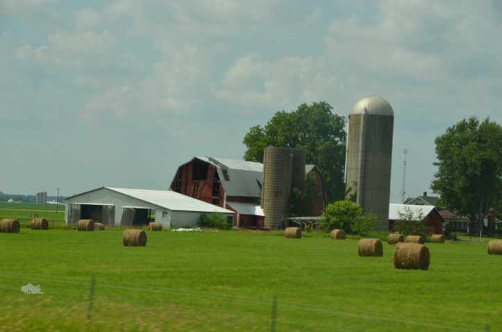 I just love the contrast between the neatly rolled bales of hay and the decrepit old barn in this one. (Photo: Shala Howell)