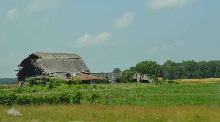 This barn required a whole new category, as decrepit didn't seem to quite cover it. We went with devastated. (Photo: Shala Howell)