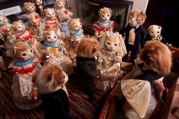 Walter Potter's Kittens Wedding, circa 1890. (Via EBTPearce on Tumblr)