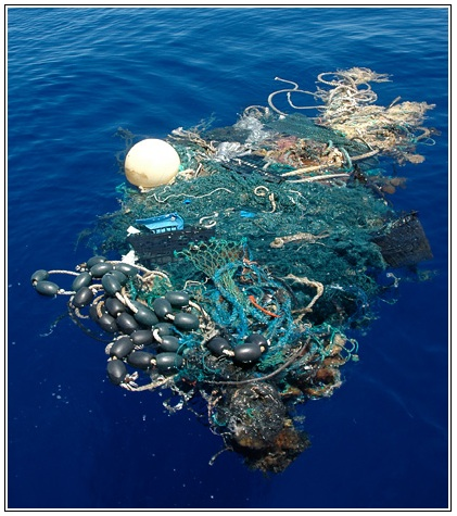 A fishing net floats in the Eastern Pacific Garbage dump. (Source: National Geographic)