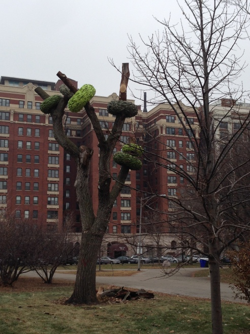 Tree art in Harold Washington Park (Photo: Shala Howell)