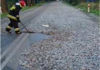 worker using a broom to push fish to the side of the road