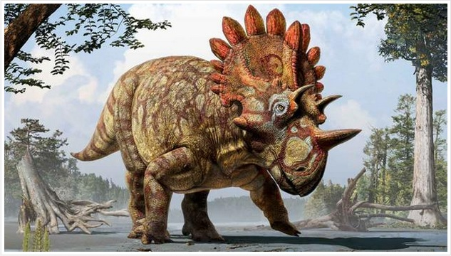 Artist's rendering of the newly discovered Regaliceratops peterhewsi (Image via Royal Tyrrell Museum of Palaeontology, Drumheller, Alberta)