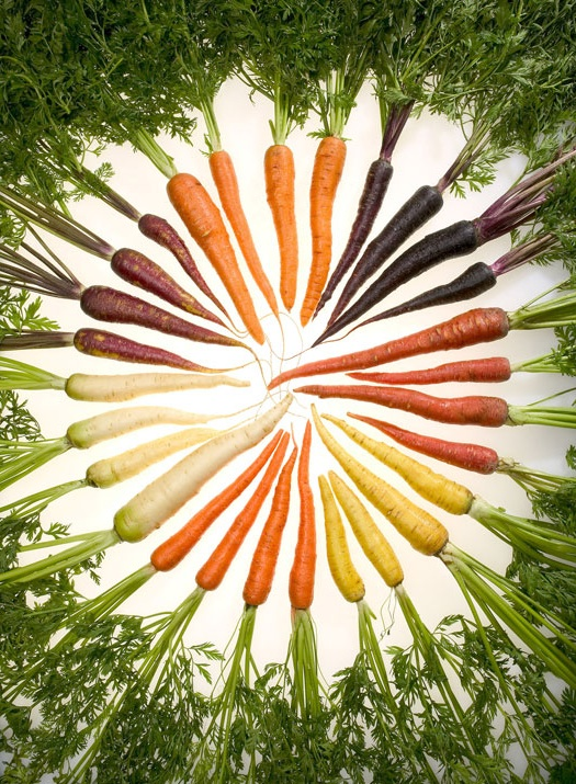 Rainbow of carrots via Next Nature.