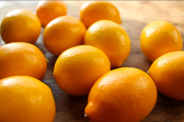 Meyer lemons via Simply Salted Meyer Lemons at Little Miss Cruciferous.