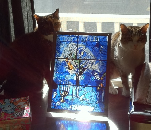 A clowder of Howell cats on a desk. (Mulberry & Cozy, circa 2012. Photo: Either Michael or Shala Howell.)