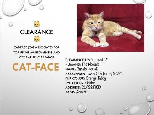 Slide features a photo of our cat and a listing of stats including his security clearance (Level 12), fur color, eye color, and rank (Admiral).