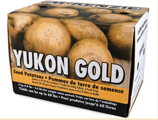 Yukon Gold seed potatoes available from the McKenzie Seed Company. (Photo: McKenzie Seed Company)