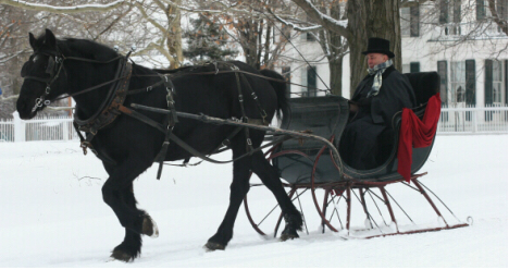 Horse with a bobbed tail pulling a sleigh in winter. (Photo via Weiner Elementary)
