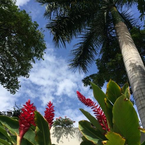 hawaii2017