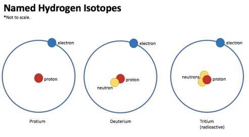 Super simplified model of the three named hydrogen isotopes. (Art: Shala Howell)