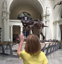 My daughter waves to Sue the T-Rex back in the days when Sue lived in the main hall of the Field Museum in Chicago.