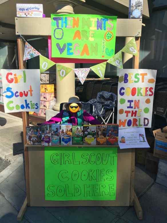 The Ten Year Old selling cookies at the wooden lemonade-stand style cookie booth the