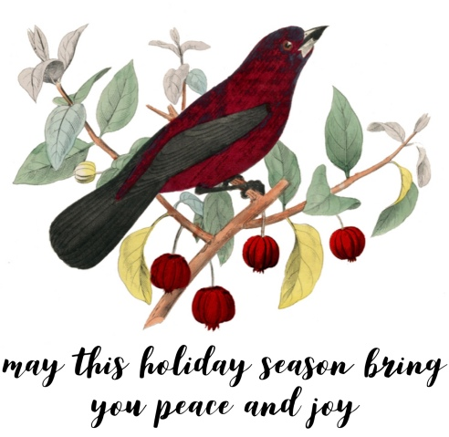 """Image from a vintage holiday card of a red bird on a tree branch from which pale green leaves and small red berries droop. Words read: """"May this holiday season bring you peace and joy."""""""