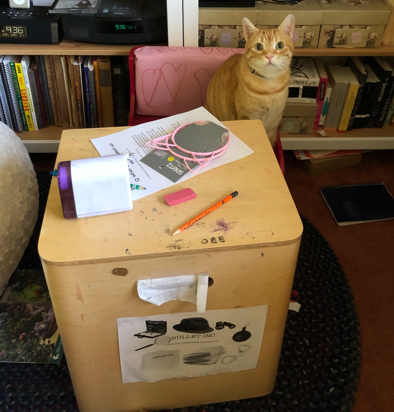 "My orange tabby, Canelo, sits at my daughter's desk. On the table top is my daughter's essay on the Mothman. The desk itself has a sign on the front that reads ""Bullet Inc. Lawsuits 