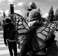 Rear View of my daughter dressed as Mothman crossing the street.
