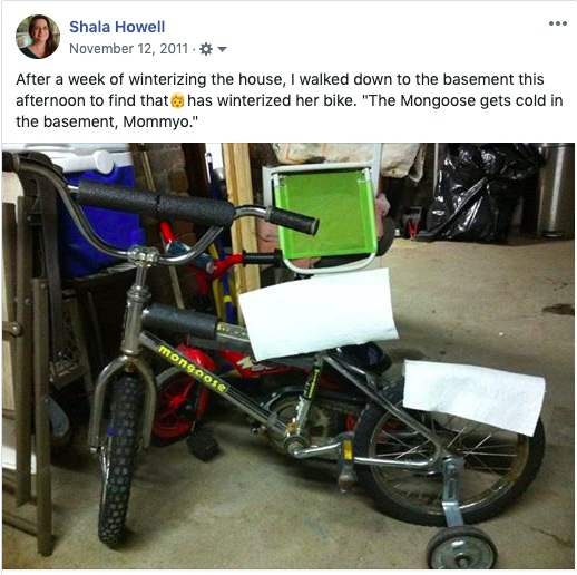 """Facebook post text: """"After a week of winterizing the house, I walked down to the basement this afternoon to find that my daughter has winterized her bike. 'The Mongoose gets cold in the basement, Mommyo.'"""""""