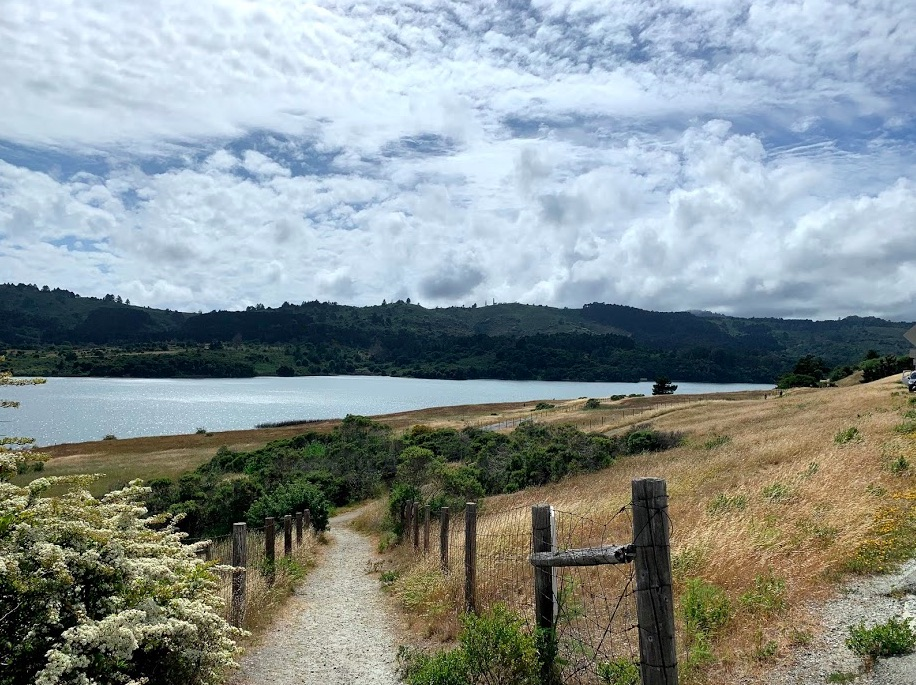 Photo consists mostly of sky, but there is also blue water, golden grass, and green juniper bushes staged along an inviting fence-post lined bike trail.