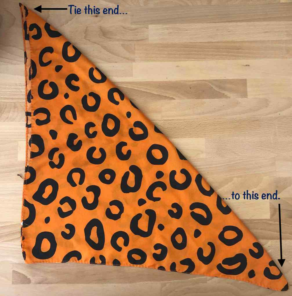 Photo of a large bandana folded into a triangle. Notes on the picture point out which ends of the bandana to tie together in step 3.