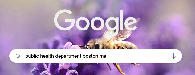 "Sample web search on the Google search engine for ""public health department boston ma"""