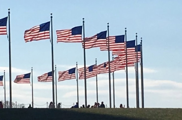 a semi-circle of US flags flying against a light blue sky.